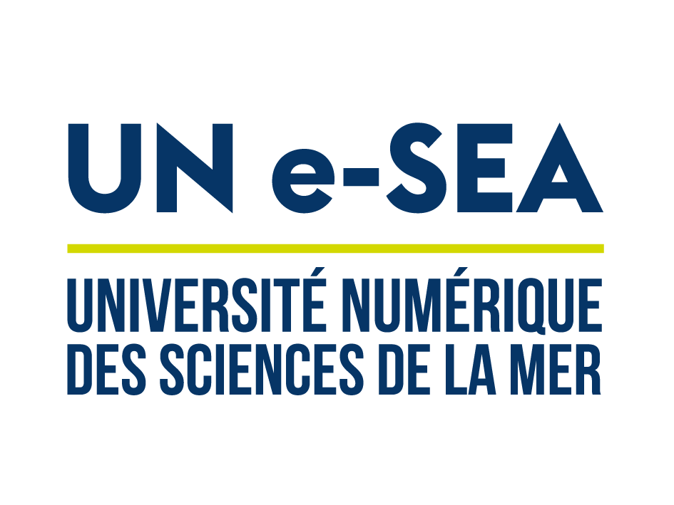 Digital University of Sea Sciences UN e-SEA